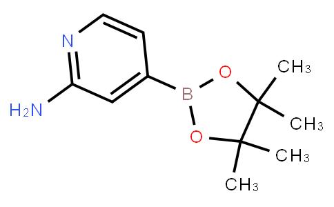 BP21911   1195995-72-2   2-Aminopyridine-4-boronic acid pinacol ester