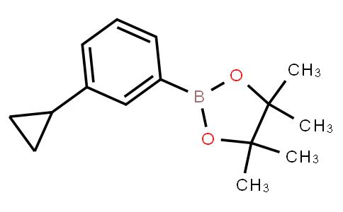 BP21957   627526-56-1   2-(3-Cyclopropylphenyl)-4,4,5,5-tetramethyl-1,3,2-dioxaborolane