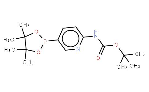 BP21967 | 910462-31-6 | 2-(Tert-butoxycarbonylamino)pyridine-5-boronic acid, pinacol ester
