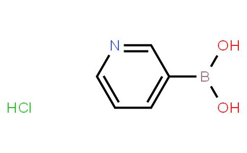 BP21984 | 265664-63-9 | Pyridine-3-boronic acid HCL