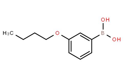 BP22145 | 352534-81-7 | 3-Butoxyphenylboronic acid