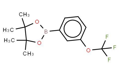 BP22151 | 262376-31-8 | 3-(Trifluoromethoxy)benzeneboronic acid, pinacol ester