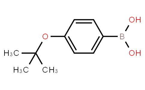 BP22167 | 176672-49-4 | 4-t-Butoxyphenylboronic acid