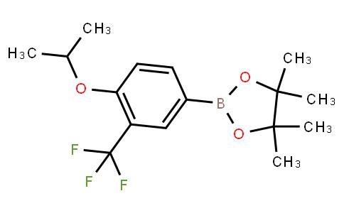 BP22686   1334607-79-2   4-Isopropanoxy-3-(trifluoromethyl)phenylboronic acid pinacol ester