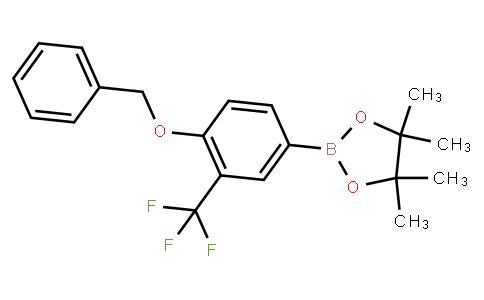 BP22691   1257078-54-8   4-(Benzyloxy)-3-(trifluoromethyl)phenylboronic acid pinacol ester