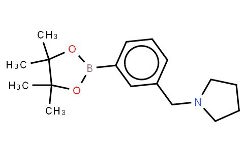 BP22736 | 884507-45-3 | 3-(Pyrrolidinomethyl)phenylboronic acid, pinacol ester