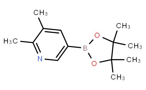 BP22831 | 741709-65-9 | 2,3-Dimethylpyridine-5-boronic acid pinacol ester
