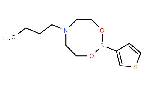 BP22851   1379794-75-8   6-Butyl-2-(3-thienyl)-1,3,6,2-dioxazaborocane