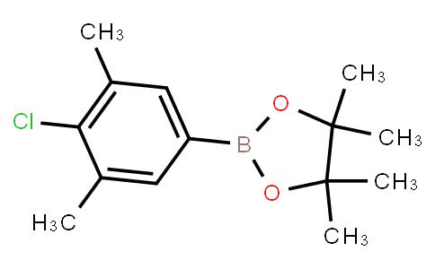 BP22911 | 1111096-20-8 | 3,5-Dimethyl-4-chlorophenylboronic acid pinacol ester