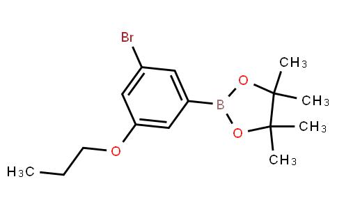BP23039 | 1218790-36-3 | 3-Bromo-5-propoxyphenylboronic acid, pinacol ester