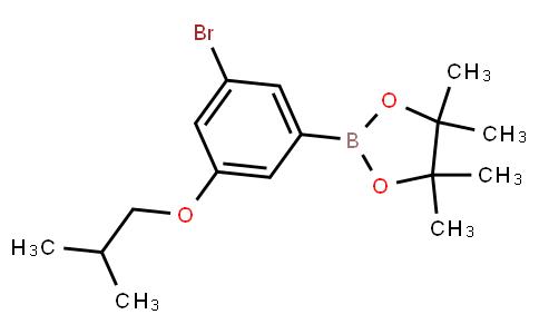 BP23042 | 1218789-48-0 | 3-Bromo-5-isobutoxyphenylboronic acid pinacol ester