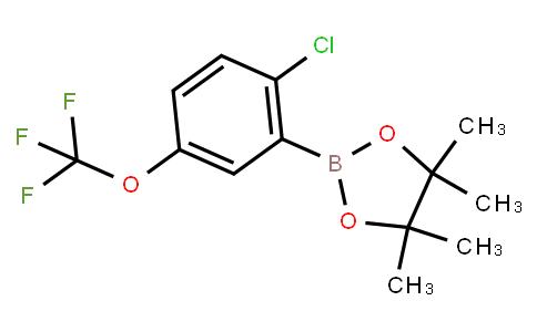 BP23048 | 2121512-77-2 | 2-Chloro-5-(trifluoromethoxy)phenylboronic acid pinacol ester