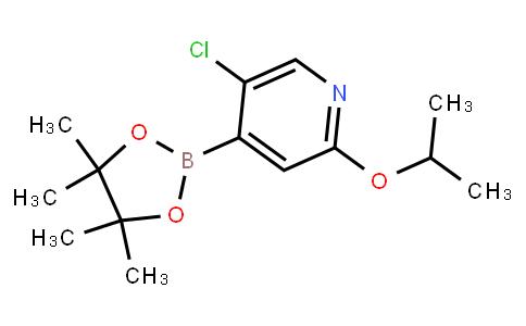 BP23062 | 2121513-31-1 | 5-Chloro-2-isoproxypyridine-4-boronic acid pinacol ester