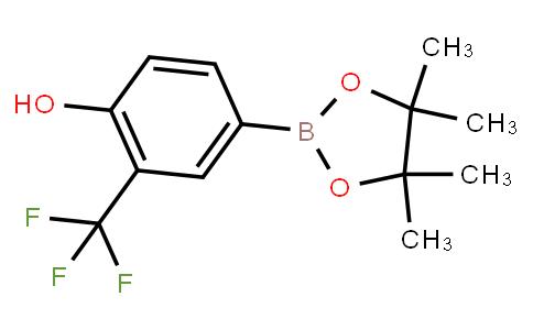 BP23113 | 1243143-45-4 | 4-Hydroxy-3-trifluoromethylphenylboronic acid pinacol ester