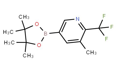 BP23133 | 2121511-95-1 | 3-Methyl-2-trifluoromethylpyridine-5-boronic acid pinacol ester