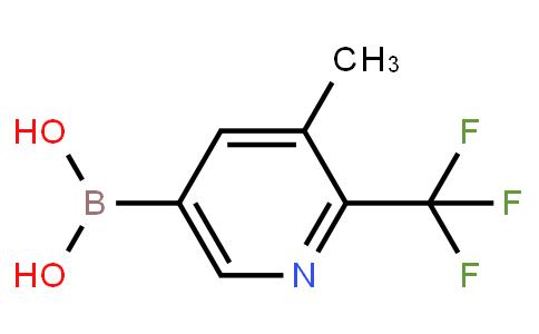 BP23135 | 1889221-03-7 | 3-Methyl-2-trifluoromethylpyridine-5-boronic acid