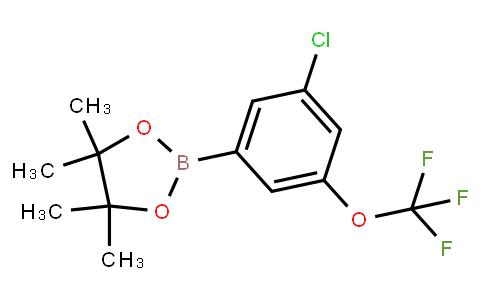 BP23168   1803320-97-9   3-Chloro-5-(trifluoromethoxy)phenylboronic acid, pinacol ester