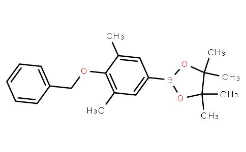 BP23174   2121513-92-4   4-Benzyloxy-3,5-dimethylphenylboronic acid pinacol ester