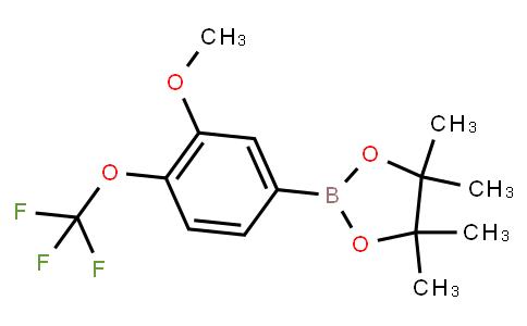 BP23181 | 1623766-74-4 | 3-Mthoxy-4-(trifluoromethoxy)phenylboronic acid pinacol ester