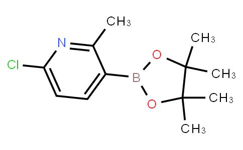 BP23186 | 1436866-79-3 | 6-Chloro-2-methylpyridine-3-boronic acid pinacol ester