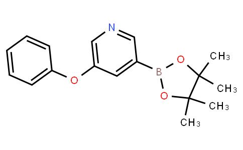 BP23197 | 1309981-45-0 | 5-Phenoxypyridine-3-boronic acid pinacol ester