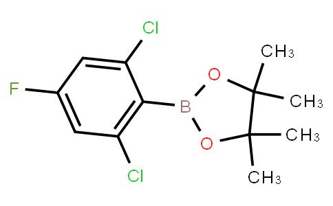 BP23206 | 2121514-25-6 | 2,6-Dichloro-4-fluorophenylboronic acid pinacol ester