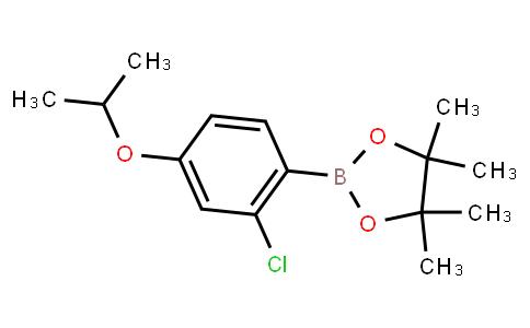 BP23217 | 2121514-95-0 | 2-Chloro-4-isopropoxyphenylboronic acid pinacol ester