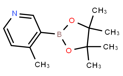 BP23237   1171891-31-8   4-Methylpyridine-3-boronic acid pinacol ester