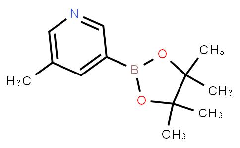 BP23306 | 1171891-42-1 | 5-Methylpyridine-3-boronic acid pinacol ester