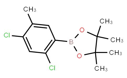 BP23393   2121512-39-6   2,4-Dichloro-5-methylphenylboronic acid pinacol ester