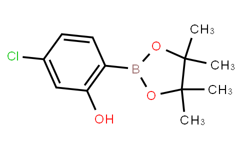 BP23402   1377503-12-2   5-Chloro-2-(4,4,5,5-tetramethyl-1,3,2-dioxaborolan-2-yl)phenol