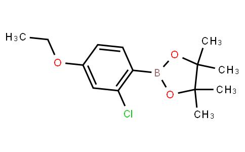 BP23432   2121513-55-9   2-Chloro-4-ethoxyphenylboronic acid pinacol ester