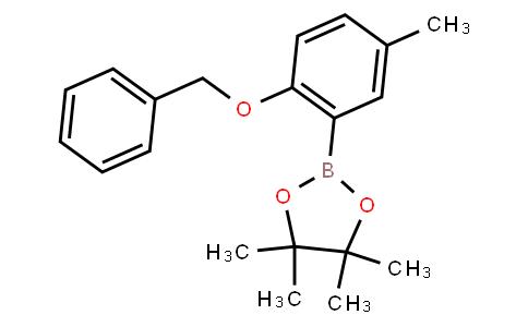 BP23436 | 1204580-85-7 | 2-Benzyloxy-5-methylphenylboronic acid pinacol ester