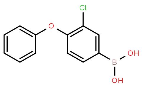 BP23442 | 2095461-96-2 | 3-Chloro-4-phenoxyphenylboronic acid