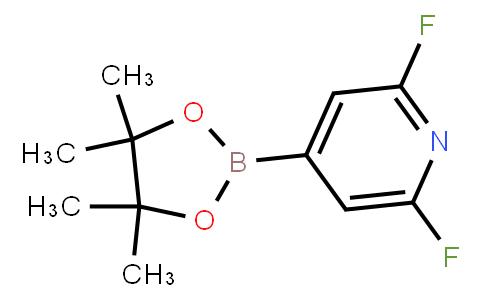 BP23457   1204333-58-3   2,6-Difluoropyridine-4-boronic acid pinacol ester