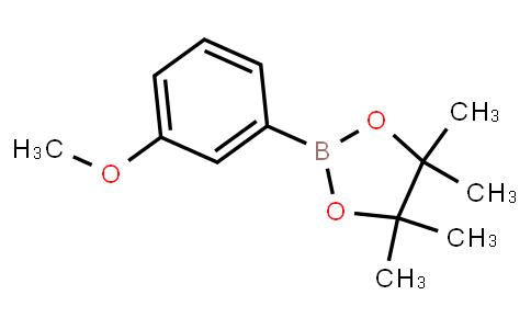 BP23458 | 325142-84-5 | 3-Methoxyphenylboronic acid pinacol ester