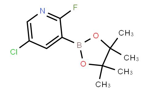 BP23463 | 937595-72-7 | 5-Chloro-2-fluoropyridine-3-boronic acid pinacol ester