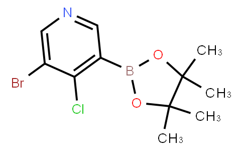 BP23481 | 2121514-13-2 | 5-Bromo-4-chloropyridine-3-boronic acid pinacol ester