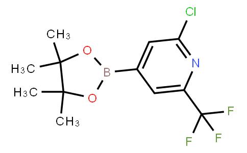BP23494 | 1218790-05-6 | 2-CHLORO-4-(4,4,5,5-TETRAMETHYL-1,3,2-DIOXABOROLAN-2-YL)-6-(TRIFLUOROMETHYL)PYRIDINE
