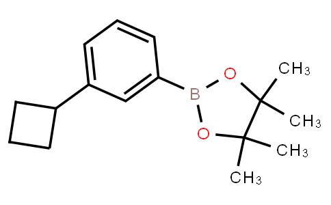 BP23550 | 2121514-70-1 | 3-Cyclobutylphenylboronic acid pinacol ester