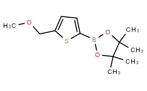 BP23555   2102681-58-1   2-(Methoxymethyl)-thiophene-5-boronic acid pinacol ester