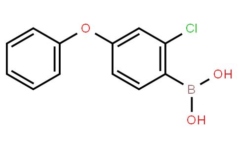 BP23579   2121514-55-2   2-Chloro-4-(phenoxy)phenylboronic acid