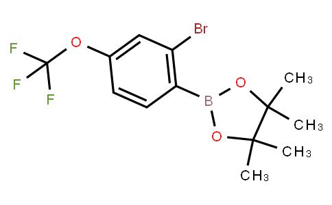 BP23619   2121514-01-8   2-Bromo-4-(trifluoromethoxy)phenylboronic acid pinacol ester