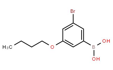 BP23667 | 1072951-84-8 | 3-Bromo-5-butoxyphenylboronic acid