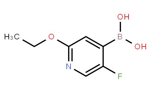BP23681 | 1259370-15-4 | 2-Ethoxy-5-fluoropyridine-4-boronic acid
