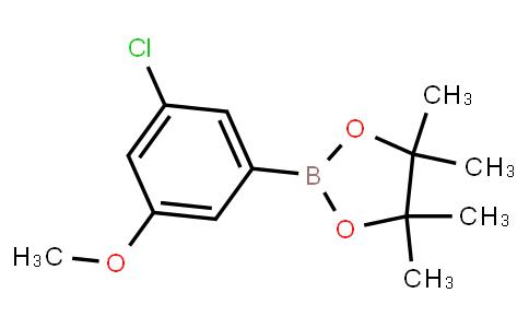 BP23723 | 929626-16-4 | 3-Chloro-5-methoxyphenylboronic acid pinacol ester