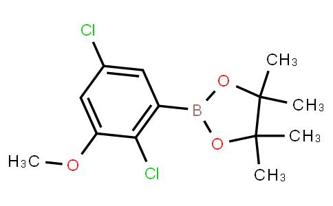 BP23743 | 936249-23-9 | 2-(2,5-Dichloro-3-methoxyphenyl)-4,4,5,5-tetramethyl-1,3,2-dioxaborolane