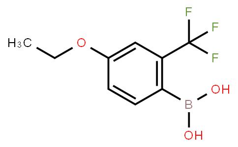BP23762   313545-39-0   4-Ethoxy-2-(trifluoromethyl)phenylboronic acid