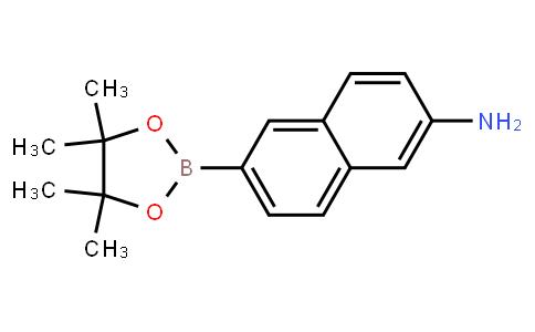 BP23834   1312611-42-9   6-(4,4,5,5-tetramethyl-1,3,2-dioxaborolan-2-yl)naphthalen-2-amine