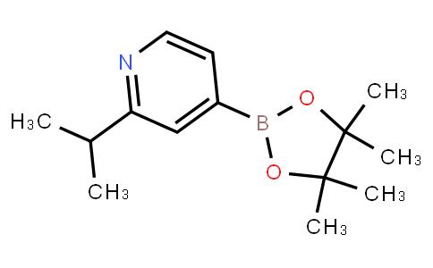 BP23845 | 1352796-58-7 | 2-isopropyl-4-(4,4,5,5-tetraMethyl-1,3,2-dioxaborolan-2-yl)pyridine